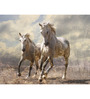 Hashtag Decor Engineered Wood 27 x 20 Inch A Pair of White Horses Framed Art Panel