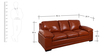 Alison Three Seater Sofa in Caramel Colour by Evok