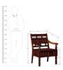 Rolleston Chair in Honey Oak Finish by Amberville