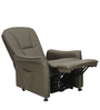 Amigo Chair with Reclinable Back in Brown Colour by Royal Oak