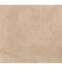 Avira Home Beige 100% Cotton 20 x 20 Bath Mat