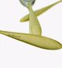 Awkenox Maiden Stainless Steel Dessert Spoons - Set of 6 (Model: B - Maiden003-Ds-006)