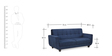 Berlin Three Seater Sofa in Blue Colour by Crystal Furnitech