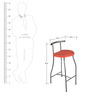 Bar Chair Red color by Ventura