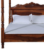 Zunckel Queen Size Poster Bed in Honey Oak Finish by Amberville
