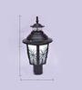 Black Gate Light By New Era