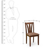 Bony Dining Chair in Brown Colour by @home