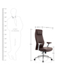Bravia Executive Chair in Brown Leather by Oblique