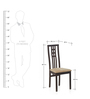 Bruni Dining Chair in Burnt Beech Finish by @ Home