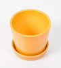 Decardo Ceramic Table Top With Saucer in Mustard