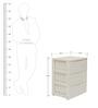 Chester Storage Drawer by Nilkamal