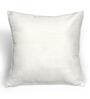 Cortina Black & White Polyester 16 x 16 Inch Velvet Cushion Cover