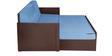 Deborrah Sofa Cum Bed in Sky Blue Colour by Auspicious