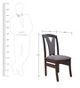 Dining Chair with Back Cushion in Wenge Colour by Crystal Furnitech