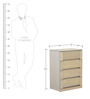 Estela Chest Of Drawers in Artisan Oak Finish by CasaCraft