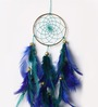 Rooh Wellness Peacock Multicolour Wool Dream Catcher