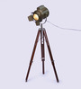 Ethnic Roots  Sheesham Wood And Brass Finish Tripod Floor Lamp