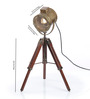 Ethnic Roots Brass Finish Brown Metal Table Tripod Lamp