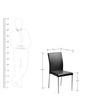Evita Dining Chair in Black Colour by Nilkamal