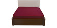 Executive 5 Inch Thick Foam Queen-Size Mattress by Nilkamal