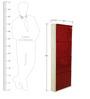 Metallic Four Door Shoe Rack in Maroon Colour by FurnitureKraft