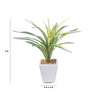 Fourwalls Green Synthetic Tall Decorative Artificial Dracaena Plant with Pot