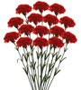 Fourwalls Red Synthetic Artificial Carnation Stem - Set of 15