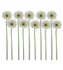 Fourwalls White Synthetic Artificial Sonia Orchid - Set of 10