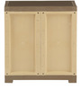 Freedom Mini Shoe Cabinet in Sandy Brown & Dark Brown Colour by Nilkamal