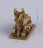 Frestol Golden Brass Nandi