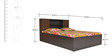 Galant King Bed with Top Storage in Wenge Colour by Crystal Furnitech