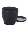 Gaia Black Glazed Ceramic 7 x 7.5 Inch Table Top Planter with Plate