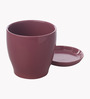 Gaia Pink Glazed Ceramic 6 x 6.5 Inch Table Top Planter with Plate