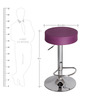 Garry cafeteria cum Bar Stool in Purple Colour by The Furniture Store