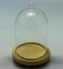 Importwala Glass Terrarium with Wooden Base
