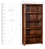 Freemont Book Shelf in Provincial Teak Finish by Woodsworth