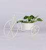 Green Girgit White Metal Cycle Planter