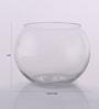 Gupta Glass Gallery Transparent Glass Vase