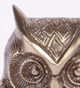 Bleachers Owl Showpiece in Brown by Bohemiana
