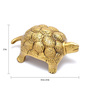 Handecor Yellow Brass Vaastu Tortoise