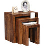 Minerva Mango Wood Set of Tables in Provincial Teak Finish by Woodsworth