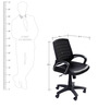 Hi-Tech Medium Back Ergonomic Chair in Black Colour by Stellar