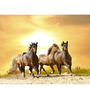 Hashtag Decor Horses Engineered Wood 30 x 20 Inch Framed Art Panel