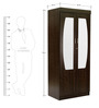 Hoshu Two Door Wardrobe with Mirror in Wenge Finish by Mintwud