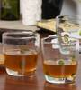 Huafu Dof With Green Dot 360 ML Whisky Tumbler - Set of 6