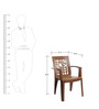 Ideal High Back Chair Set of Two in Brown colour by Cello
