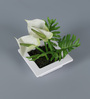 Importwala Off White Iron Artificial Cala Lily Flowers with Pot