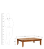 Java coffee Table in Natural Finish by Inliving