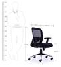 Jordon Medium Back Chair in Black Colour by Durian