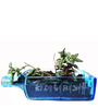 Kavi Recyled Blue Sapphire Table Top Planter